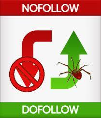 dfollow nofollow