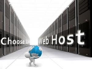 Top 3 Most Important Factor In Picking A Web Host