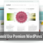 use premium wordpress theme