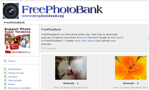 Do You Know These Top 10 Websites to Find Free Images for Your Blog?