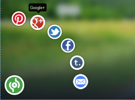 animated social sharing widgets