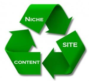 small-niche-website